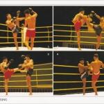 โปสการ์ด มวยไทย /กีฬา