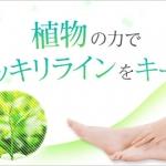 ☆彡วิตามินญี่ปุ่นดีท็อกซ์ ขาเรียว ลดหน้าท้อง