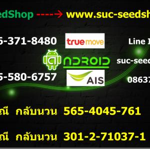 วิธีการตั้งค่า APN 3G/4G ของเครือข่ายต่างๆ - Suc-SeedShop