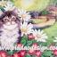 กระดาษสาพิมพ์ลาย สำหรับทำงาน เดคูพาจ Decoupage แนวภาำพ แมวขนฟูไปทั้งตัวทำหน้าแป้นแล้น อยู่ในสวนหน้าบ้าน thumbnail 1
