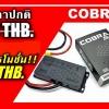 Cobra20F MINIBIKE